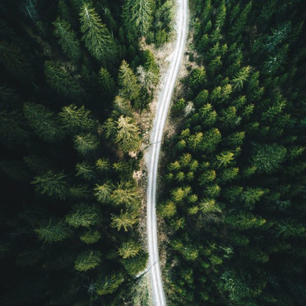 Aerial view of a dense forest in Europe